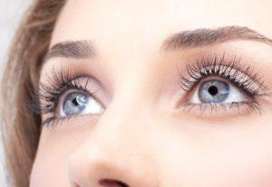 Make Lash atsauksmes, forum, comments